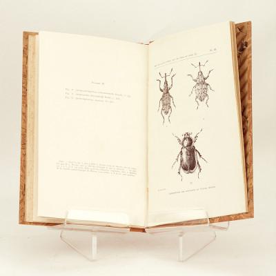 Coléoptères. Mission scientifique du Hoggar envoyée de Février à Mai 1928 par M. Pierre Bordes.