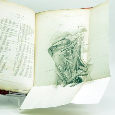 Traité complet d'anatomie chirurgicale générale et topographique du corps humain ou anatomie considérée dans ses rapports avec la pathologie chirurgicale et la médecine opératoire. Troisième édition entièrement refondue, et augmentée en particulier de tout ce qui concerne les travaux modernes sur les aponévroses. ATLAS DE 17 PLANCHES.