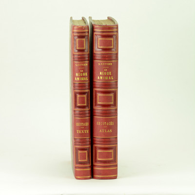 Le règne animal distribué d'après son organisation, pour servir de base à l'histoire naturelle des animaux, et d'introduction à l'anatomie comparée. Les CRUSTACÉS. Volume de texte + atlas.