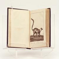 Musée du jeune naturaliste; traité méthodique et élémentaire d'histoire naturelle, comprenant la description des espèces d'animaux les plus remarquables: mammifères, oiseaux, poissons. Orné d'un grand nombre de gravures.