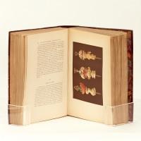 Le livre de cuisine par Jules Gouffé-ancien officier de bouche du jockey-club de Paris-comprenant la cuisine de ménage et la grande cuisine. Avec 25 planches imprimées en chromolithographie et 161gravures sur bois dessinées d'après nature par E. Ronjat.