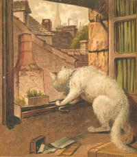Les aventures d'une chatte blanche. Petit conte avec six gravures coloriées. Traduit de l'anglais par Mlle Brigitte P. Avec six gravures coloriées.