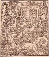 Le Quatorzième livre d'Amadis de Gaule, traitant des gestes & généreux faicts d'armes & d'amours de plusieurs grands princes & seigneurs, spécialement du très preux & gentil Prince Don Silves de la Selve, filz de l'Empereur Amadis de Grèce, et de la Royne Finistée de Thebes. Nouvellement mis en François par Antoine Tyron.